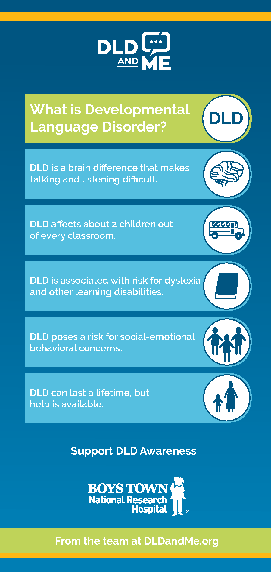 What is Developmental Language Disorder infographic