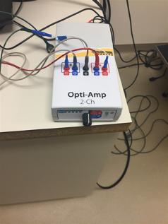 Opti-Amp