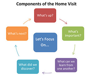 Diagram of Components of the Home Visit, see below for detailed steps